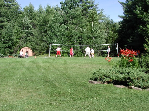 badminton  volleyball